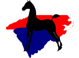 The Carolinas Futurity Logo